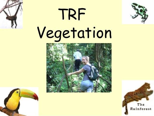 TRFVegetation
