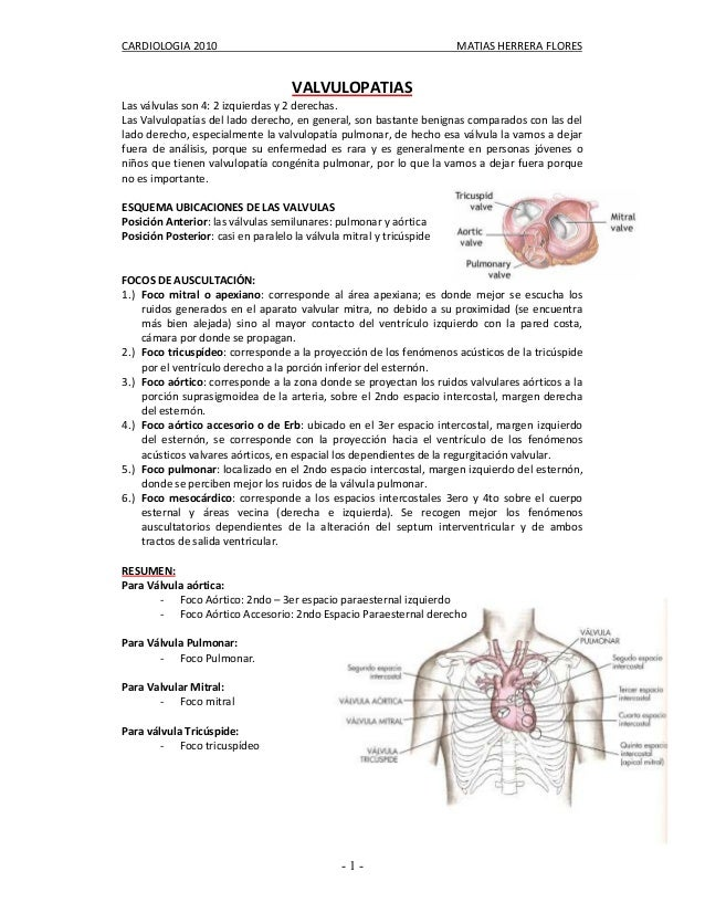 CARDIOLOGIA 2010 MATIAS HERRERA FLORES- 1 -VALVULOPATIASLas válvulas son 4: 2 izquierdas y 2 derechas.Las Valvulopatías de...