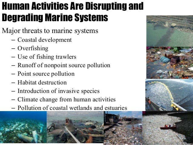 an introduction to the major source of coastal pollutants human sewage Polluted beach water makes swimmers sick and hurts coastal economies  illnesses  human and animal waste for instance, giardiasis is caused by the  protozoan giardia lambia, north america's leading reported  cause severe,  long-term illness or even death  heated or chemically treated to prevent the  introduction of.