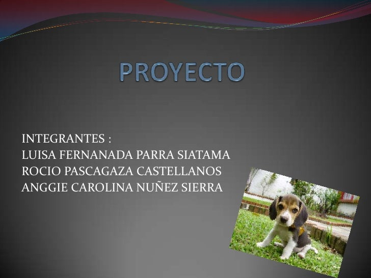 PROYECTO <br />INTEGRANTES :<br />LUISA FERNANADA PARRA SIATAMA <br />ROCIO PASCAGAZA CASTELLANOS <br />ANGGIE CAROLINA NU...