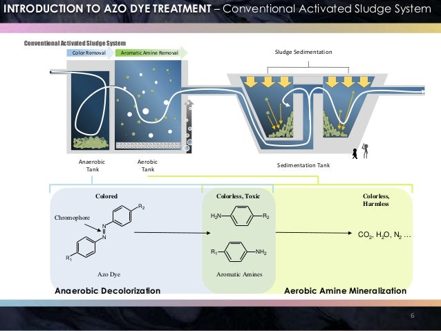 biodegradation of azo dyes thesis