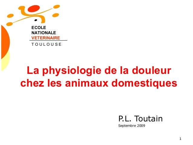 1 La physiologie de la douleur chez les animaux domestiques P.L. Toutain Septembre 2009 ECOLE NATIONALE VETERINAIRE T O U ...