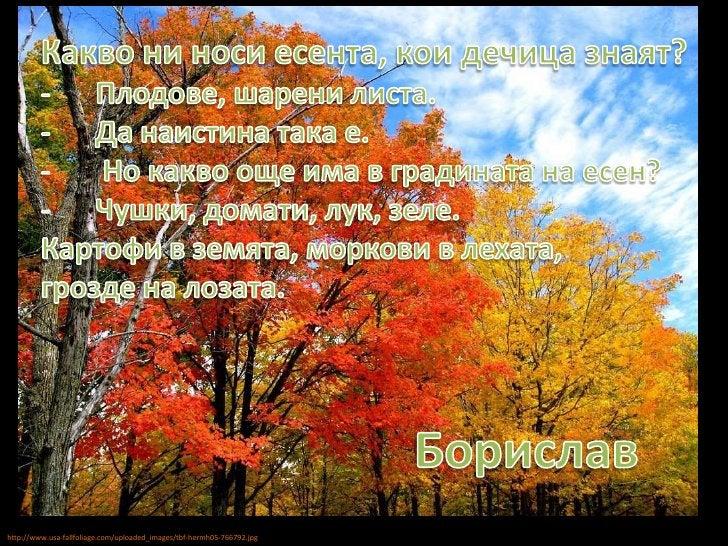 Какво ни носи есента, кои дечица знаят?<br /><ul><li>Плодове, шарени листа.