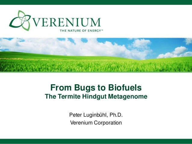 From Bugs to Biofuels The Termite Hindgut Metagenome Peter Luginbühl, Ph.D. Verenium Corporation