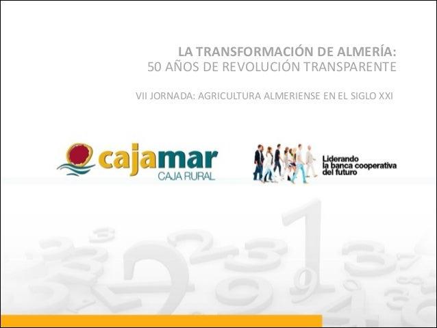 LA  TRANSFORMACIÓN  DE  ALMERÍA:   50  AÑOS  DE  REVOLUCIÓN  TRANSPARENTE VII  JORNADA:  AGRICULTURA ...