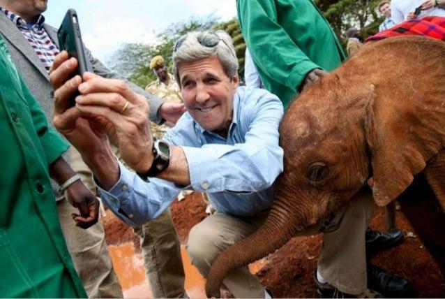50 Astonishing Animal Photos of 2015