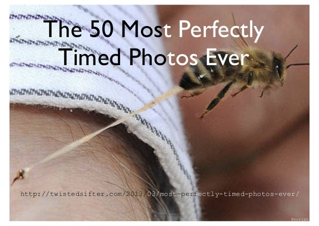 The 50 Most Perfectly      Timed PhotosEverhttp://twistedsifter.com/2013/03/most-perfectly-timed-photos-ever/            ...
