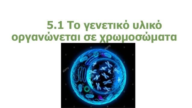 5.1 5.1 Το γενετικό υλικό οργανώνεται σε χρωμοσώματα