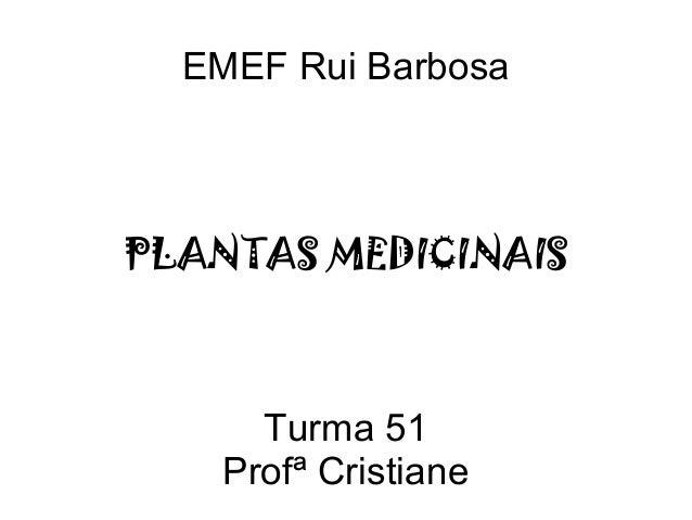 Turma 51 Profª Cristiane PLANTAS MEDICINAIS EMEF Rui Barbosa