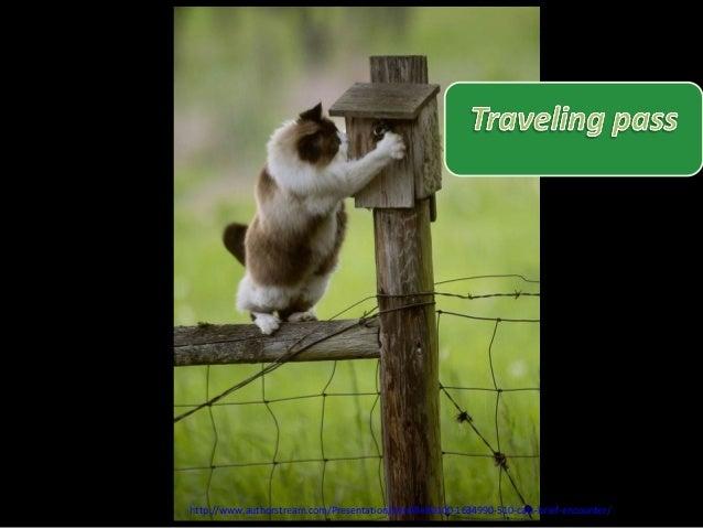 http://www.authorstream.com/Presentation/mireille30100-1634990-510-cats-brief-encounter/