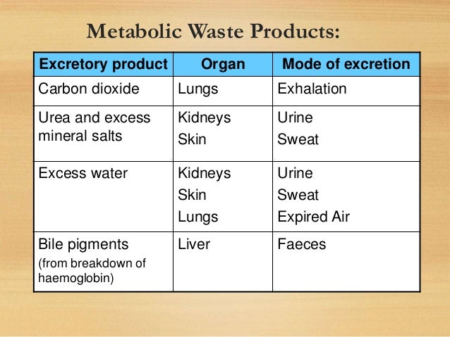 metabolic waste