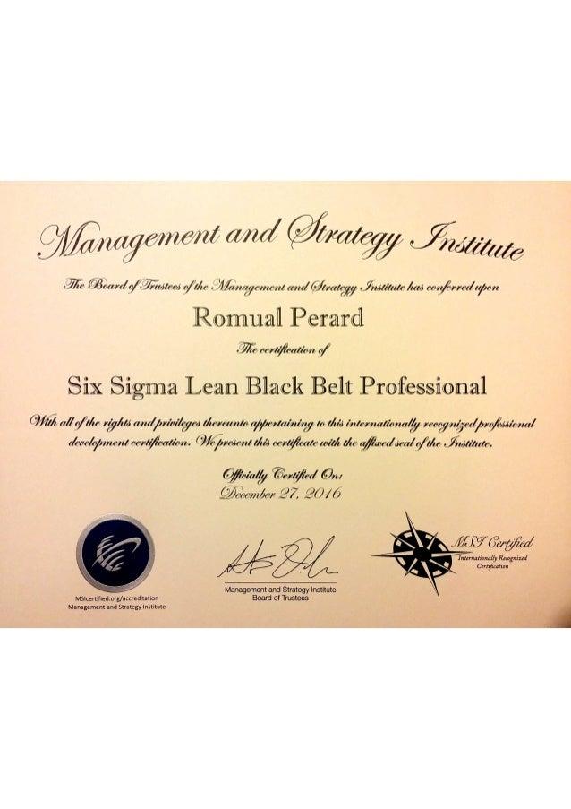 Management Strategy Institute3six Sigma Lean Black Belt Professional