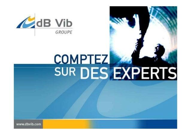 dBdB VibVib GROUPEGROUPE Le groupe est composé de trois sociétésLe groupe est composé de trois sociétés indépendantes et c...