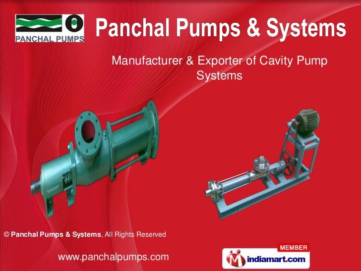 Manufacturer & Exporter of Cavity Pump                                             Systems© Panchal Pumps & Systems, All R...