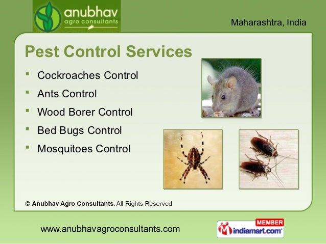 Agro Consultants By Anubhav Agro Consultants Thane