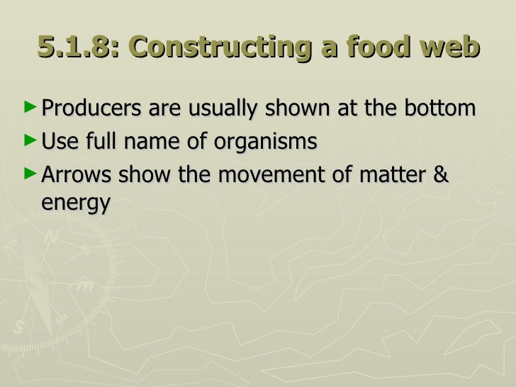 5.1.8: Constructing a food web <ul><li>Producers are usually shown at the bottom </li></ul><ul><li>Use full name of organi...