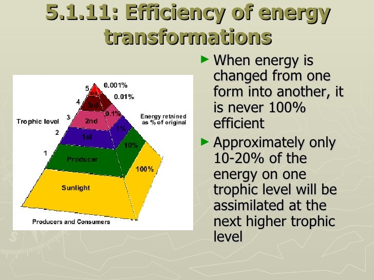 5.1.11: Efficiency of energy transformations <ul><li>When energy is changed from one form into another, it is never 100% e...