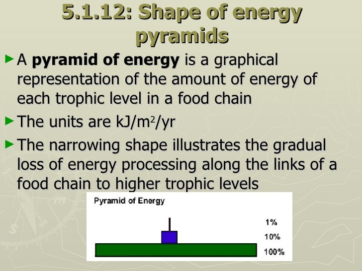 5.1.12: Shape of energy pyramids <ul><li>A  pyramid of energy  is a graphical representation of the amount of energy of ea...
