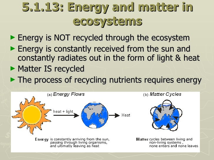 5.1.13: Energy and matter in ecosystems <ul><li>Energy is NOT recycled through the ecosystem </li></ul><ul><li>Energy is c...