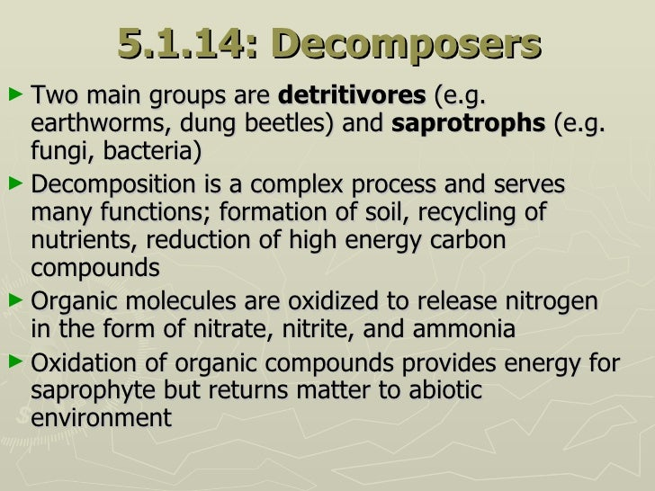 5.1.14: Decomposers <ul><li>Two main groups are  detritivores  (e.g. earthworms, dung beetles) and  saprotrophs  (e.g. fun...