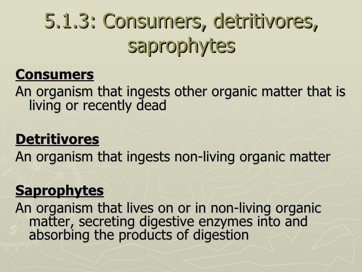 5.1.3: Consumers, detritivores, saprophytes <ul><li>Consumers </li></ul><ul><li>An organism that ingests other organic mat...