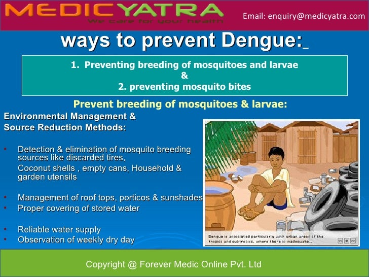 ways to prevent dengue Find this pin and more on life, health, etc tralala by gabbyinovel the aedes mosquito is the dengue virus carrier top 10 ways to prevent dengue fever see more.