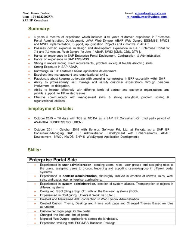 sap enterprise portal consultant resume