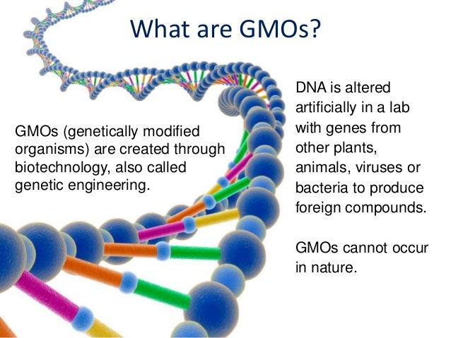 dangers of genetic engineering Genetic engineering, also called genetic modification or genetic manipulation, is the direct manipulation of an organism's genes using biotechnology it is a set of.