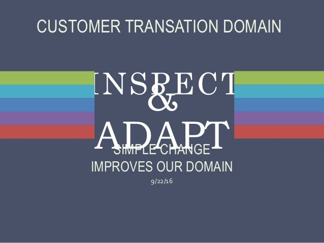 INSPECT SIMPLE CHANGE IMPROVES OUR DOMAIN 9/22/16 & ADAPT CUSTOMER TRANSATION DOMAIN