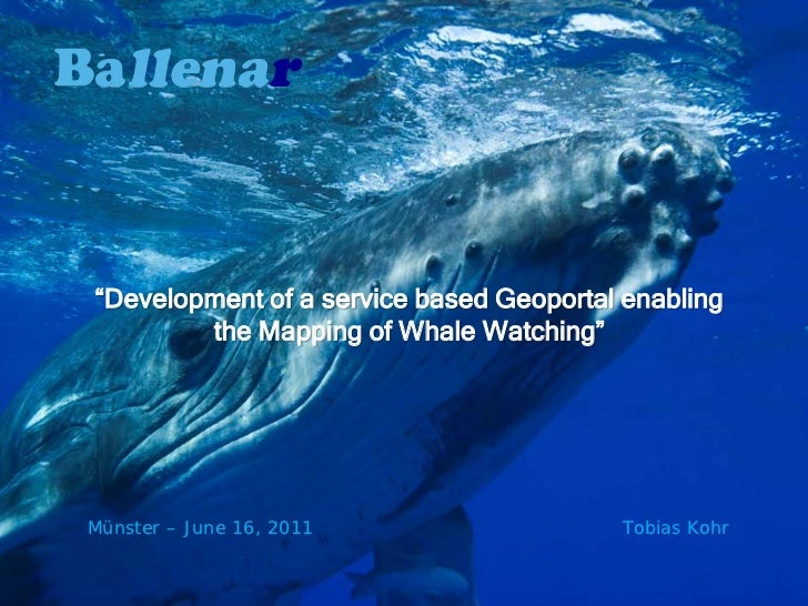 """""""Development of a service based Geoportal enabling        the Mapping of Whale Watching""""Münster – June 16, 2011           ..."""