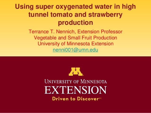 Using super oxygenated water in high tunnel tomato and strawberry production Terrance T. Nennich, Extension Professor Vege...
