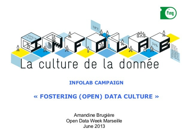 THE  INFOLAB   INFOLAB CAMPAIGN « FOSTERING (OPEN) DATA CULTURE » Amandine Brugière Open Data Week Marseille June 2013