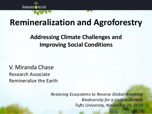 Remineralization and Agroforestry  Addressing Climate Challenges and  Improving Social Conditions  V. Miranda Chase  Resea...