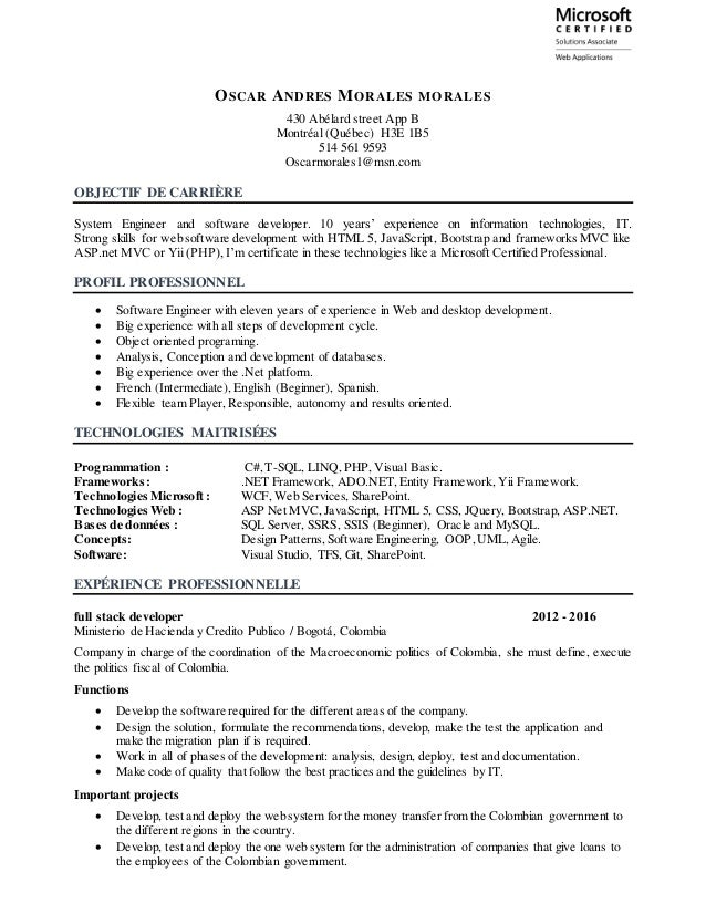 cv informatique english