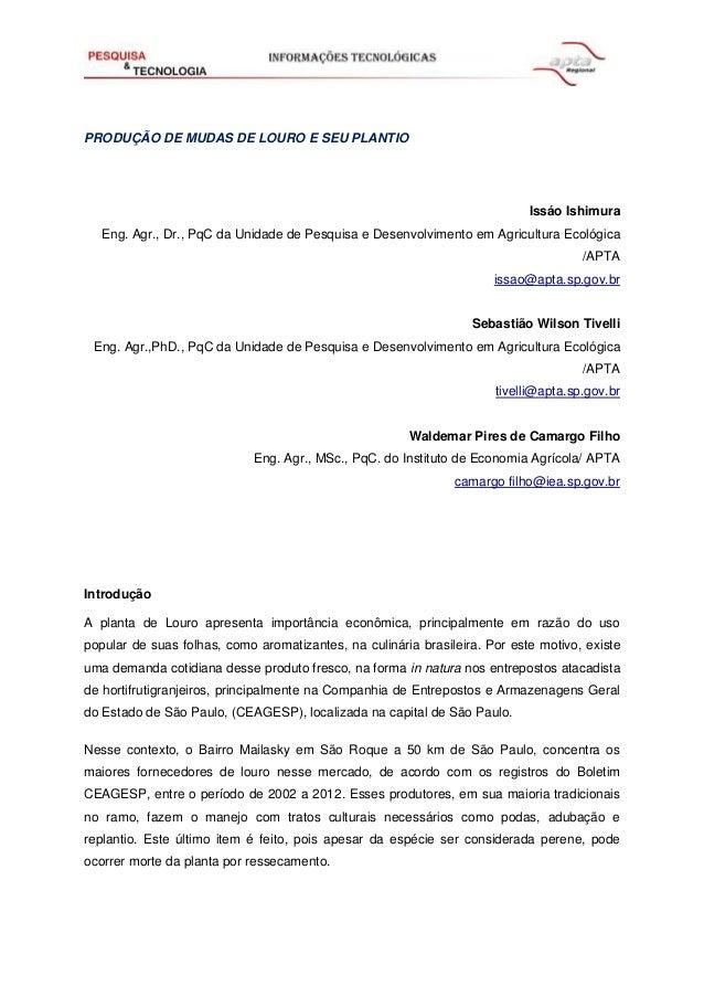 PRODUÇÃO DE MUDAS DE LOURO E SEU PLANTIO  Issáo Ishimura Eng. Agr., Dr., PqC da Unidade de Pesquisa e Desenvolvimento em A...