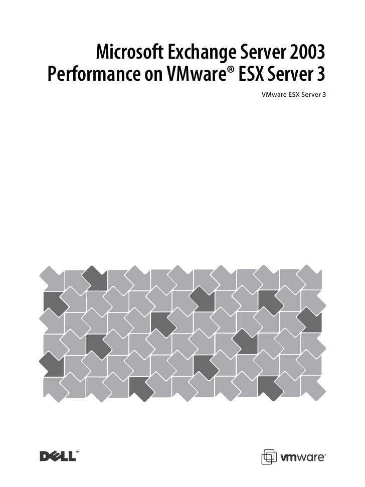Microsoft Exchange Server 2003 Performance on VMware® ESX Server 3                            VMware ESX Server 3