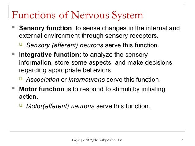 the purpose of nervous tissue is Nervous tissue makes up the different parts of our nervous system it allows us   connective tissue: types, functions & disorders function of.