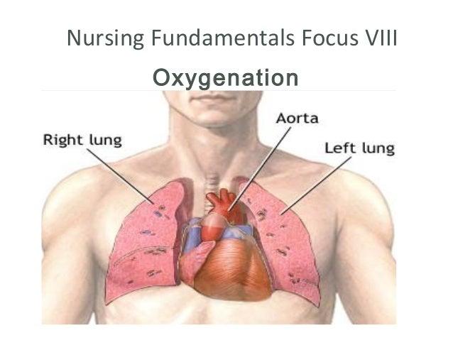 Nursing Fundamentals Focus VIII        Oxygenation