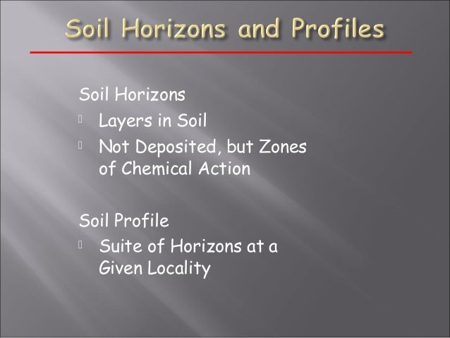 Soil 3 for Soil zone of accumulation