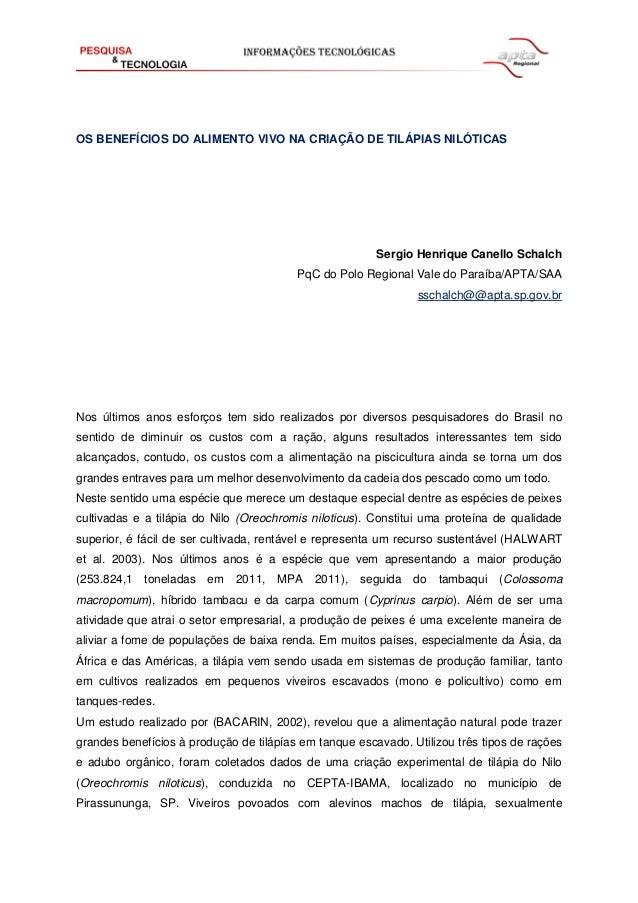OS BENEFÍCIOS DO ALIMENTO VIVO NA CRIAÇÃO DE TILÁPIAS NILÓTICAS  Sergio Henrique Canello Schalch PqC do Polo Regional Vale...