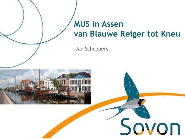 MUS in Assen van Blauwe Reiger tot Kneu Jan Schoppers