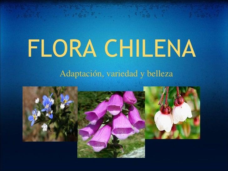 FLORA CHILENA Adaptación, variedad y belleza