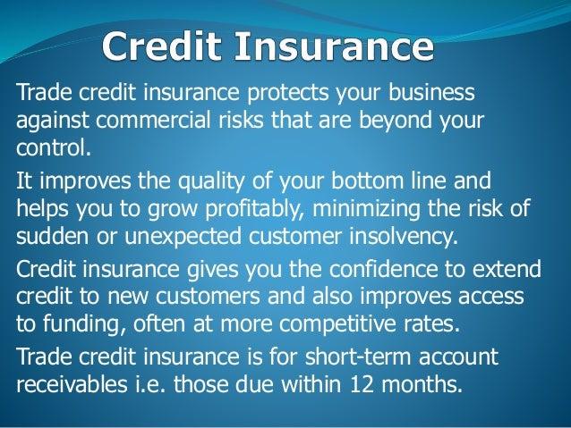 Deraya Insurance Brokers Powerpoint Presentation 1