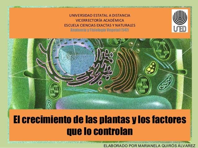 Factores de crecimiento de las plantas