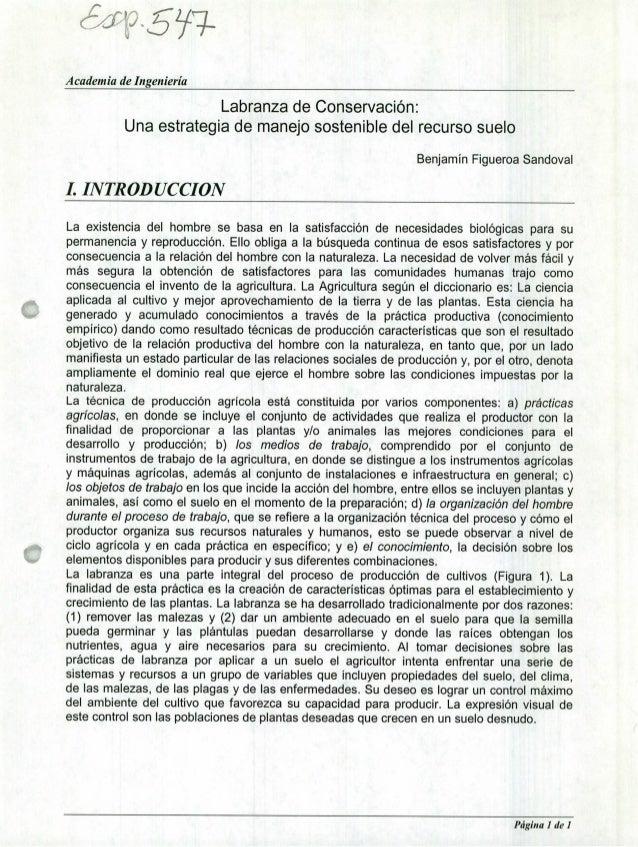 'ç5• 5L Academia de Ingeniería Labranza de Conservación: Una estrategia de manejo sostenible del recurso suelo Benjamín Fi...