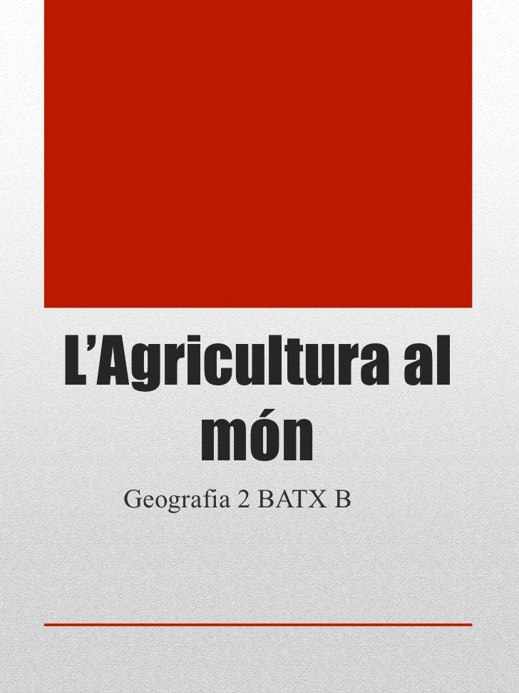 L'Agricultura al      món  Geografia 2 BATX B