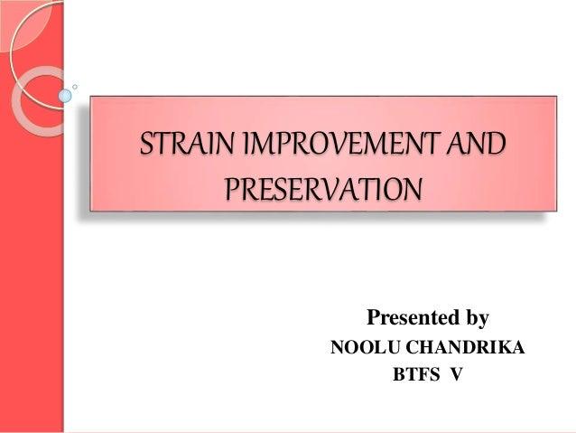 STRAIN IMPROVEMENT AND PRESERVATION Presented by NOOLU CHANDRIKA BTFS V