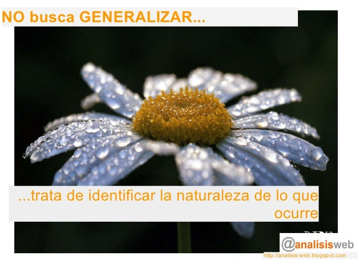 NO busca GENERALIZAR... ...trata de identificar la naturaleza de lo que ocurre http://analisis-web.blogspot.com