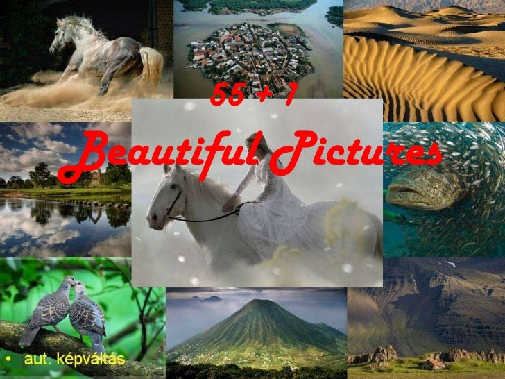 55 + 1   Beautiful Pictures