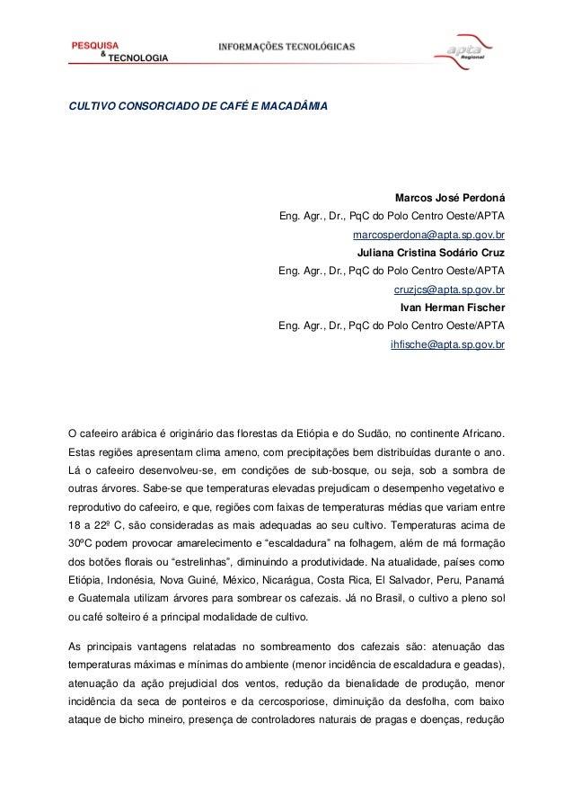 CULTIVO CONSORCIADO DE CAFÉ E MACADÂMIA  Marcos José Perdoná Eng. Agr., Dr., PqC do Polo Centro Oeste/APTA marcosperdona@a...